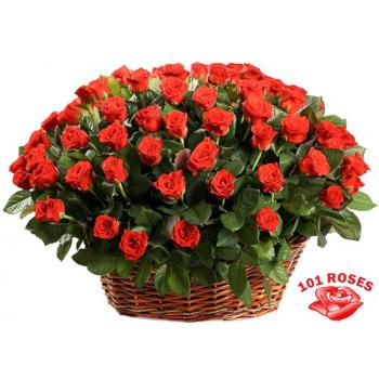 101 red roses in a basket