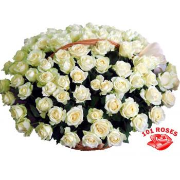 101 white roses in a basket